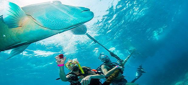 Cairns–descubre la Gran Barrera de Coral